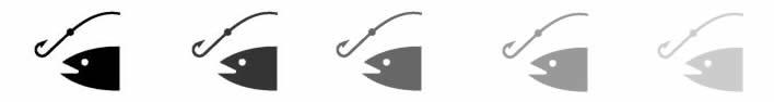 maritimo-pesquera-banner